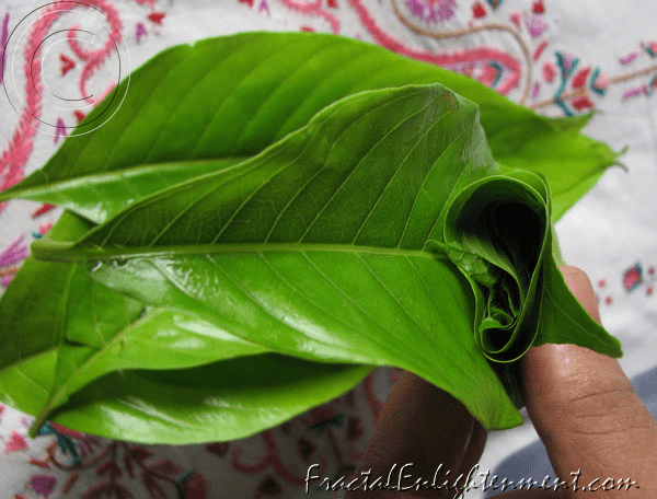 herbal medicine for cold cough and fever