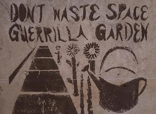 guerrilla garden1