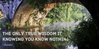 know-nothing-socrates